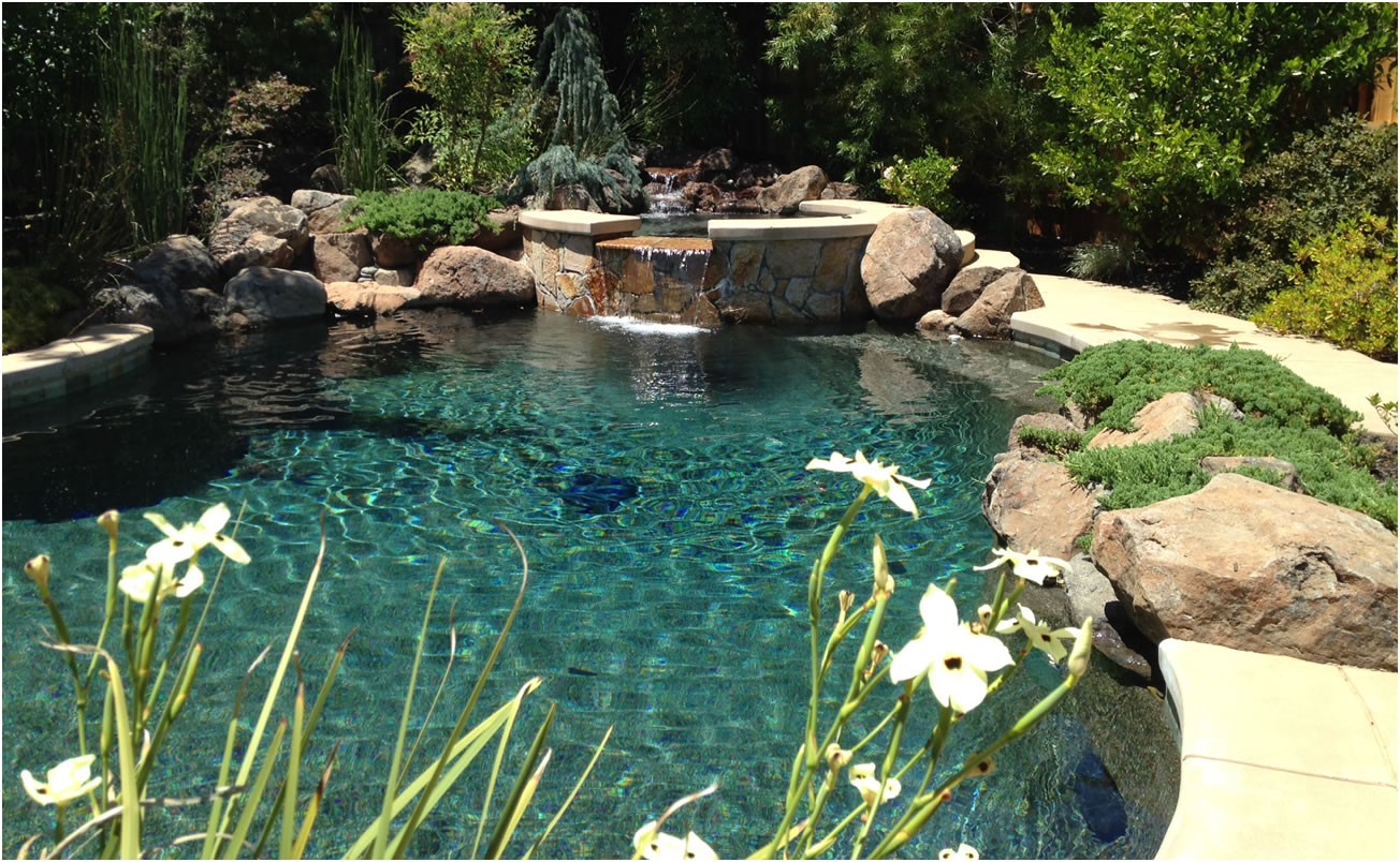 Swimming Pools Gallery Of Sacramento California Swimming